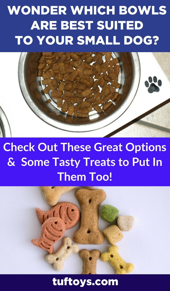 Did Someone Say Doggy Treat Only The Best Bowls Will Do Best