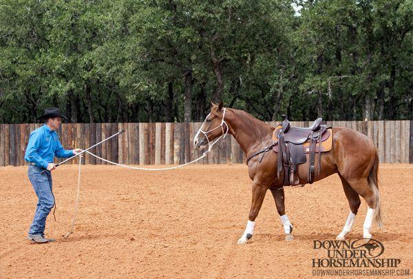 Downunder Horsemanship | Training Tip: Improve a Little Every Day