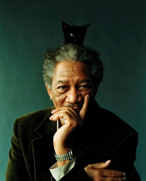 Morgan Freeman. That's a cat on top of God