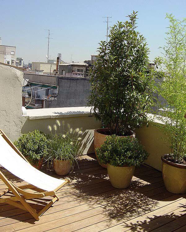 14 best Terrazas urbanas y jardines images on Pinterest | Adornos ...