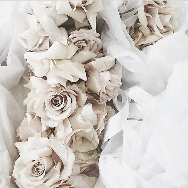 • BOUQUET • We always love a simple bouquet of fresh roses • #bouquet #roses #blooms #wedding # bride  #Regram via @onedaybridal
