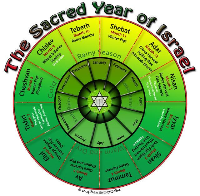 The months and years of the Jewish calendar are established by the cycles of the…