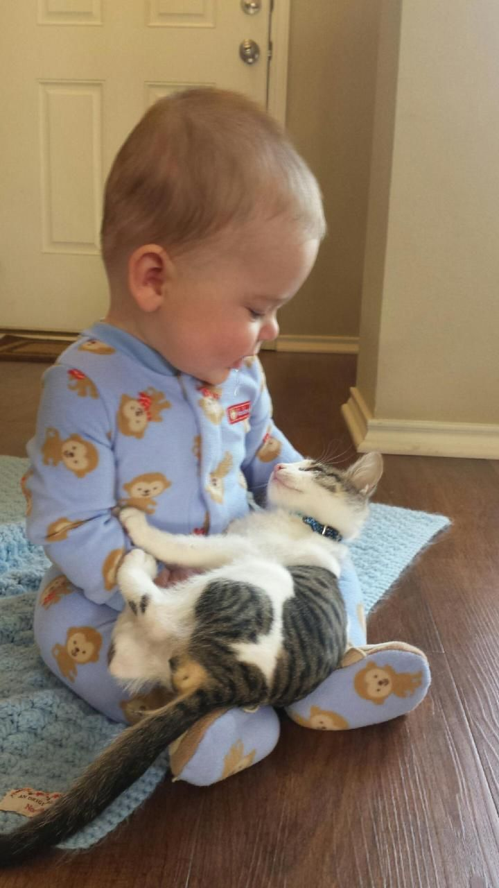 //Just adorable. Baby and cat #pets