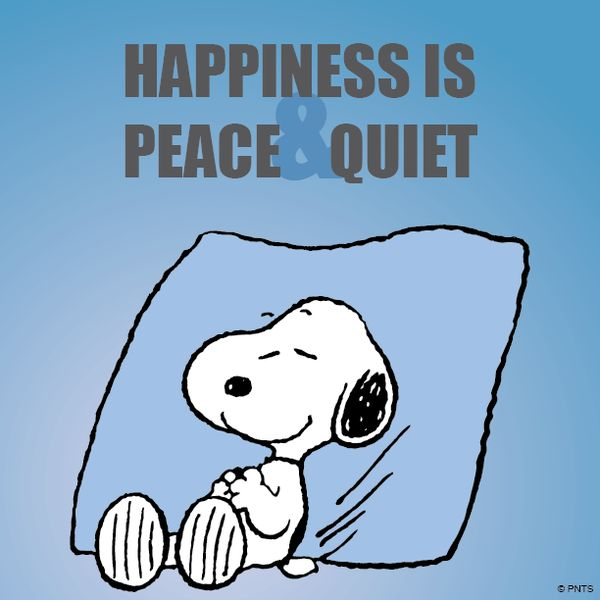 'Happiness is Peace and Quiet', you said it Snoopy.
