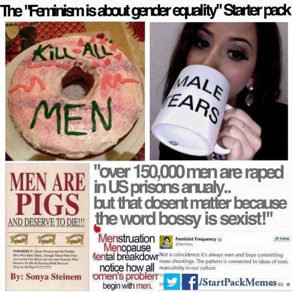 The 'feminism is about equality' starter pack