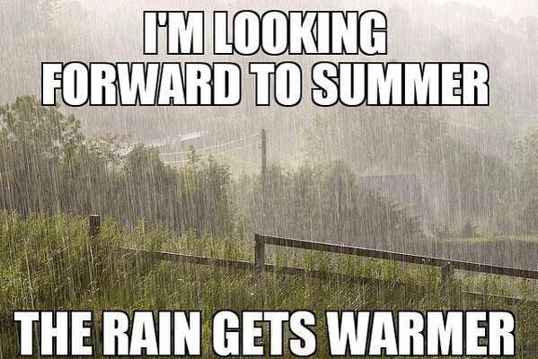 Welsh Summer