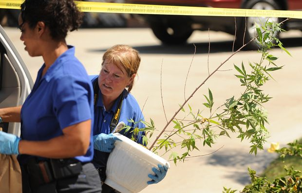 Rodney King's death: Police confiscate marijuana from his home