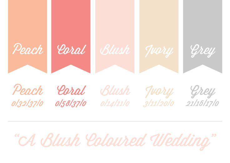 wedding ideas with the color blush, coral, grey   Colour Scheme: Blush   Peach   Coral   Ivory   Grey