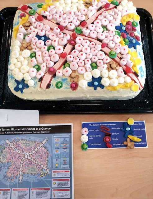 Entry 1: The Tumour Microenvironment, from the Centre for Cancer & Inflammation