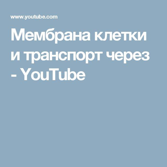 Мембрана клетки и транспорт через - YouTube
