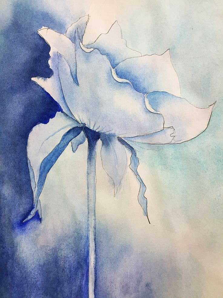 Flower Study In Blue Inspiration From A Giuliano Boscaini
