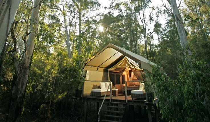 100 Incredible Travel Secrets #9 Paperbark Camp, NSW