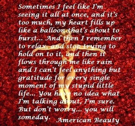 17 Best images about American Beauty on Pinterest | Beauty ...
