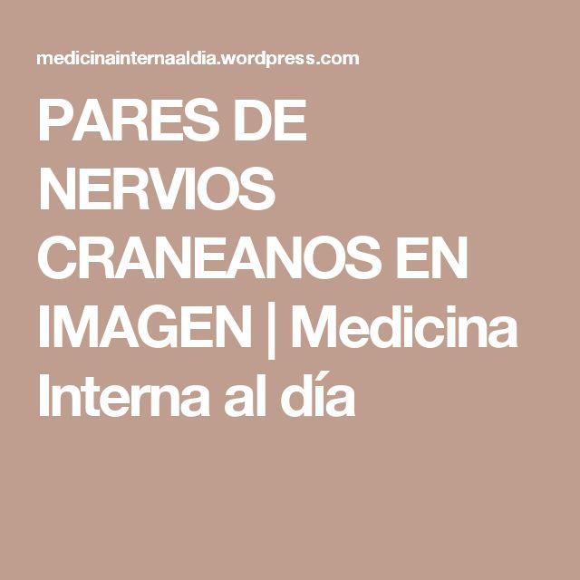 PARES DE NERVIOS CRANEANOS EN IMAGEN | Medicina Interna al día
