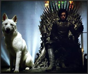 game of thrones - Google Search