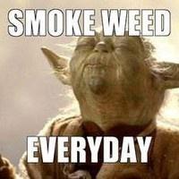 Smoke weed everyday (DJ Hardbeat remix) by DJ Hardbeat22 on SoundCloud