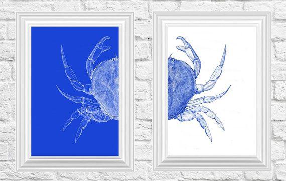 Granchio di mare blu 2 illustrazione di Sea Life nautico stampa arte illustrazione disegno Poster digitale stampa arte parete arredamento parete appeso a parete