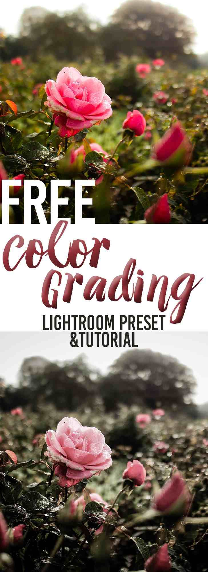 25 best ideas about Color Grading on Pinterest  Cinematography