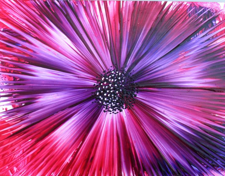 Flower painted in encaustic wax by Phil Madley using an iron.