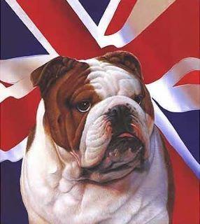British Bulldog, 1.1.2010