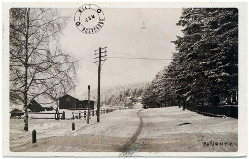 """The description on this postcardsays that it is a reprint of a 1920 photo by Lauri Marjanen of Puijontie (""""street of Puijo"""") in Kuopio, Finland."""