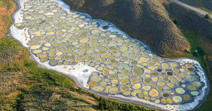 As British Columbia dries out every summer, most of Spotted Lake's water evaporates, leaving hundreds of briny pools.