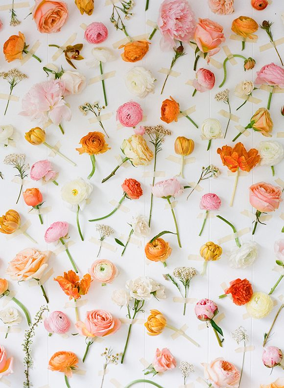 Individual Flowers taped to the wall. #instant #backdrop #picture #perfect