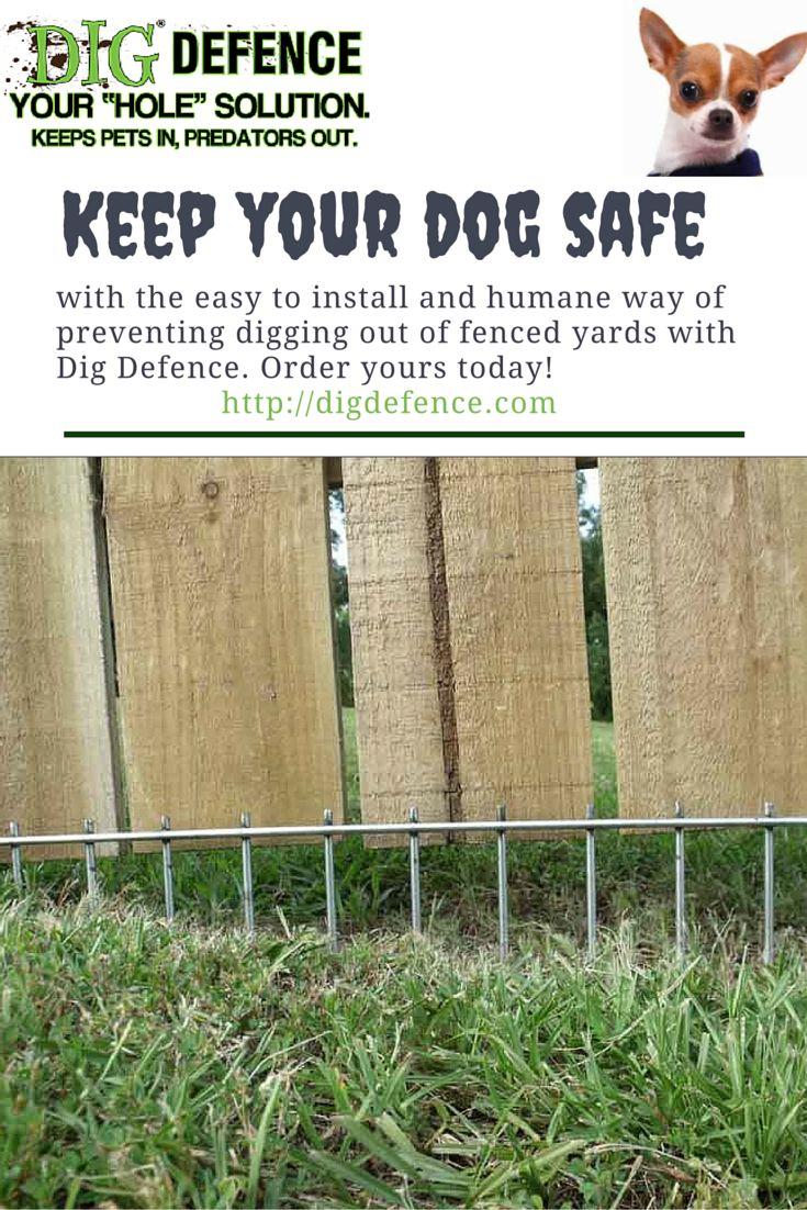 top 25+ best dog yard ideas on pinterest | diy dog yard, dog runs