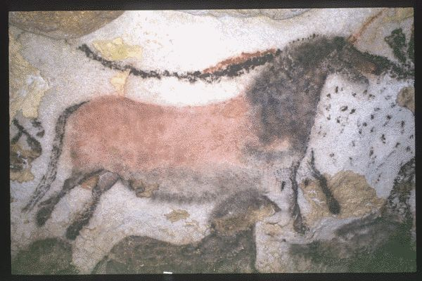 MONTIGNAC (Dordogne, 24). Grotte de Lascaux. Bilan des études. Récapitulation. Légende : Salle des taureaux, paroi gauche (nord) : cheval polychrome rouge et noir de profil droit. Il est peint sur le flanc d'un grand auroch présumé femelle : les petites taches noires à l'avant de l'encolure du cheval correspondent au pelage de l'auroch. Sous la ligne ventrale de l'équidé bichrome, un petit cheval noir, de profil droit, est peint.