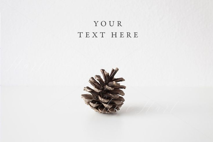 Styled stock photography - Christmas styled wall mock up - Jpeg - Wall mock up - Pine branch + cone - Perfect for quotes, placeholders by WhiteHartDesignCo on Etsy
