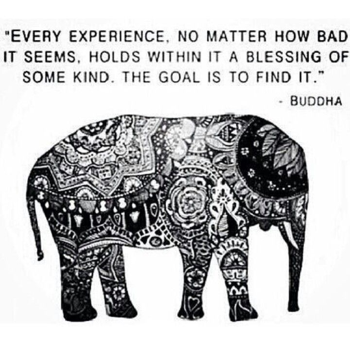 Budda Quote | Every Experience