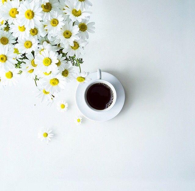 Coffee Coffee Coffee, Caffeine, Artsy, Trendy, Latte, Cappuccino, Frappuccino, Espresso, Iced Coffee, Recipes, flower, mug, black, minimalist