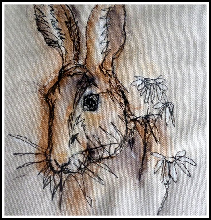 Brown hare by Loopy