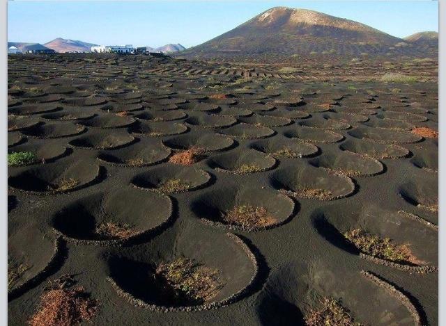 The stone semi-circles are called Zocos, Lanzarote Island, Spain