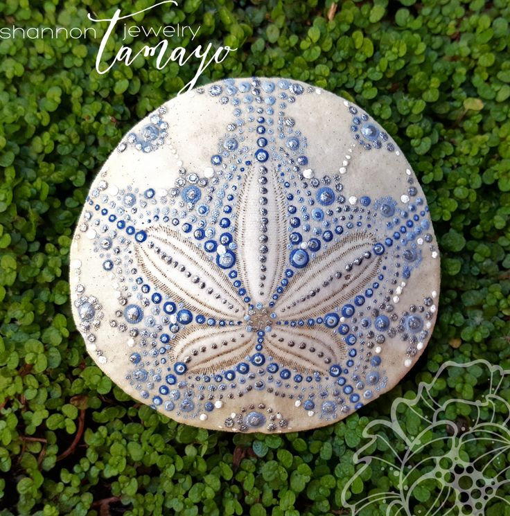 sand dollar craft ideas 715 best images about coastal decorating on 5361