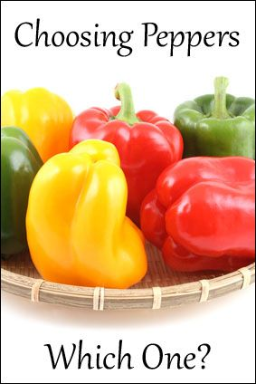 HOW TO CHOOSE PEPPERS  ... Peppers with 3 BUMPS on the bottom are sweeter♀Female and better for eating raw in salads.   Peppers with 4 BUMPS on the bottom ♂Male are firmer and better for cooking.