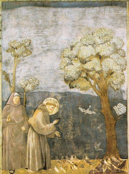 Citaten Franciscus Van Assisi : Beste ideeën over sint franciscus op pinterest st