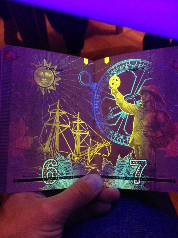 Bet you didn't know this: the Canadian passport has hidden artwork that's only visible under UV black light. The black light designs are integrated with watermark artwork that is already visible under normal light. Here's a sample page from the most recent version of the passport with Samuel de Champlain, the founder of Quebec, and with a black light astrolabe and sun detail.