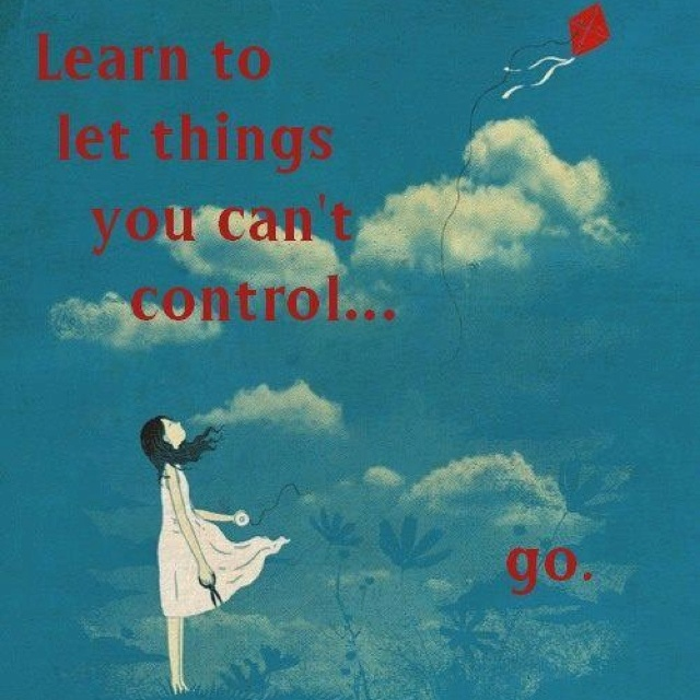 Quotes About Things You Can T Have: Learn To Let Things Go You Can't Control