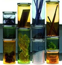 kitchen jars by iittala http://buyapothecaryjars.com/iittala-jars/