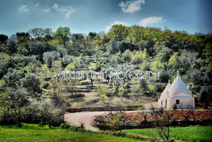 Enchanting countryside near Cisternino and Ostuni!