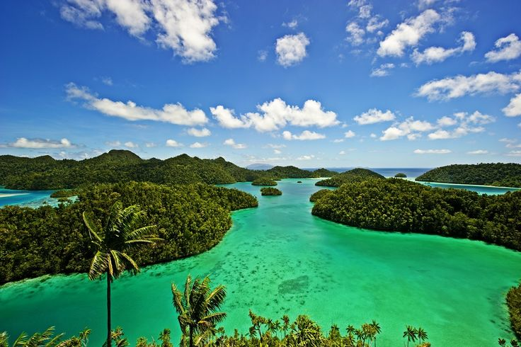 The sparsely populated Raja Ampat Islands comprise around 1000 islands just off Sorong. With their sublime scenery of steep, jungle-covered...