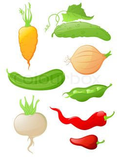 set of vectorglossy vegetable icons