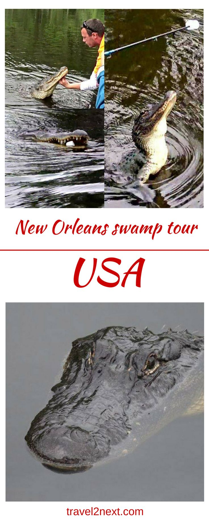 The Ultimate Swamp Tour in New Orleans. Things to do with a week in New Orleans? Well, official tours include haunted, ghost, voodoo, cemetery, post-Katrina and city tours, and then, there's a swamp tour.