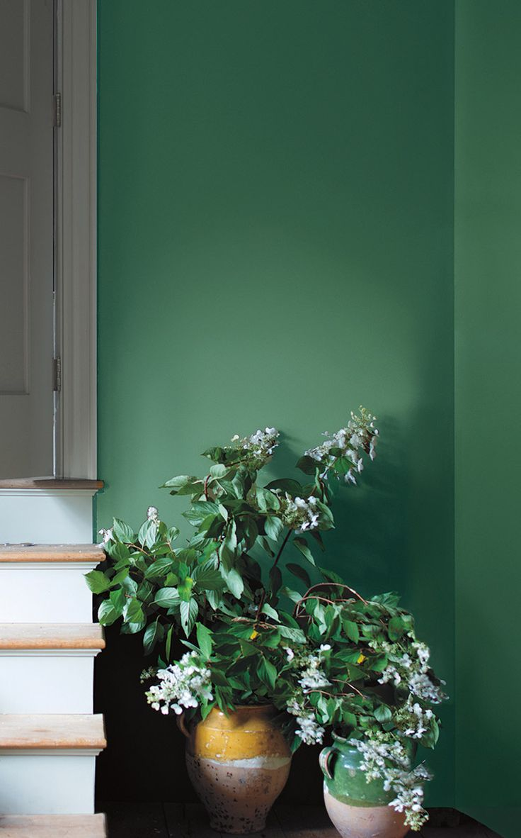Breezy flowers in vintage clay pots set against Veronese Green-painted walls offer a warm welcome next to a sunroom doorway. - Experience Century Veronese Green O4