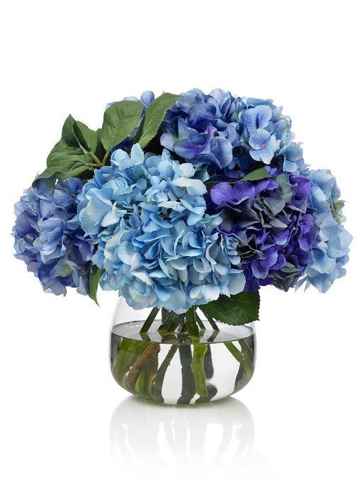 Les 25 meilleures id es de la cat gorie hortensia bleu sur pinterest bouquet de hortensia bleu - Comment planter un hortensia ...