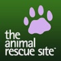 Carly Rae Jepsen--Call Me, Maybe--Corgi Rae….Pooch Parody!: Animal Rescue, Cats Attack, Cat Detective, Steals Blanket, Black Cats, Beagle, Dog, Needy Animals