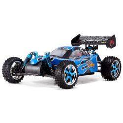 Electric Brushless RC Cars