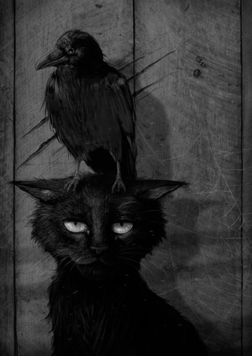 black cat  crow picture for inside outhouse