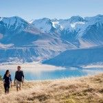 New Zealand Travel Adventure - Novel Travel list